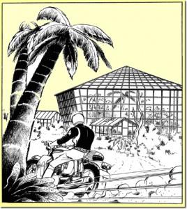 アクション漫画の金字塔...植物園の戦い!